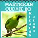 Masteran Kicau Cucak Ijo by EdukaPlay