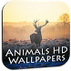 Animal wallpapers hd by Mars Developerz