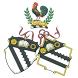 Bolton Alumni Network