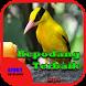 Suara Burung Kepodang Terbaik by Hoki Developer