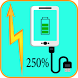 Fast Battery Charger 2017