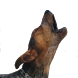 Barking Dog Sounds by Konfigurator sounds