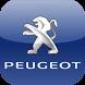 Peugeot Abcis Picardie by Nicolas Valente