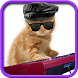 Funny cats Dancing and playing by iim mobile