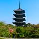 Japan:To-ji Temple(JP081) by takemovies