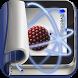 Atomic Models by EvoBooks