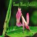 Beauty Mantis Collection by Zibun
