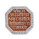Shivjayanti DBATU
