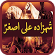 Shahzada Ali Asgher by EvageSolutions