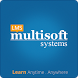 Multisoft Learning by Multisoft Systems