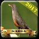 Cantos de Sabiá 2017 by saudara app