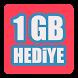 1 GB Hediyeli Sorular - İnternet Kazan