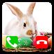 Call Prank Easter Bunny