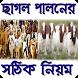 ছাগল পালন পদ্ধতি by apps.maja.bd