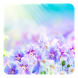 Summer Flowers LWP by Dynamic Live Wallpapers