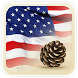 USA Press News by Pinenuts Android Developers