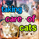 Cara Merawat Kucing by Athensbul