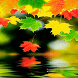 Beautiful Leafs Live Wallpaper by Daksh Apps