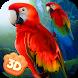 Wild Parrot Sim 3D: Jungle Bird Fly Game by Virtual Animals World