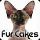 Fur Cakes - Gollum by Amplitude Metamedia Corp.