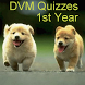 DVM 1st Yr - All Quizzes by Ruval Enterprises