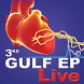 Gulf EP LIVE 2016