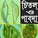 চিতল ও পাবদার সুস্বাদু রেসিপি by Recipes