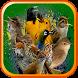 Canto de Pássaros Brasileiros by Suporter App