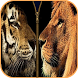 Lion Tiger Zipper Screen Lock by Flag Wallpaper HD HQ Free for mobile