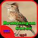 Suara Burung Branjangan Gacor