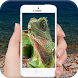 Lizard On Screen Scary Joke by Masha Apps Studio