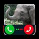 Fake Call Elephant Prank by Chalala