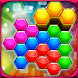 Hexa Blocks Logic Puzzles by Red Tomato Games