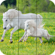 Puzzle - Beautiful Horses by Appilo