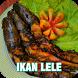 Aneka Resep Ikan Lele by Muslim Ramadan