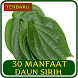 30 Manfaat daun Sirih by Boygabaru