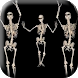 Belly Dancing Live Skeleton by Best Live Background