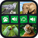 Animal sounds+pictures App For kids by Gameifunia