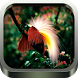 Kicau Burung Lengkap by omikko