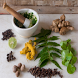 Ayurvedic Plants and Herbs by Quad SoftTech Pvt. Ltd.