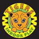 Tigers Indoor Soft Play