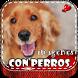 Imagenes de Perros con Frases by Nice-Apps