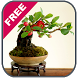 Bonsai Tree Design Ideas by Winda App Studio
