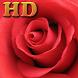 Rose Wallpaper (HD) by bubbles app
