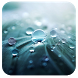 Rain IV 91 Launcher Theme by Mobo Developer Team