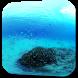 Underwater Video Wallpaper by Hubert Apps