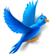 Bird Wallpapers by Diego Reyes