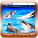 Dolphin Live Wallpaper HD by Chiron Studio
