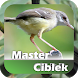 Master Ciblek Juara by Phipaya Developer