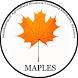 Maples by Dr Nitin Ukunde Soft Systems Consultancies Pvt Ltd